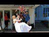 наша свадьба под музыку Селин Дион - Сила любви. Picrolla