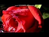 «С моей стены» под музыку Шансон - С днём РОЖДЕНИЯ.(..в твой день рожденья цветы и поздравленья..). Picrolla