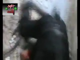 Syria, Bab sbaa 29-5-2012 - Radical Terrorist Extremists killed!!!.