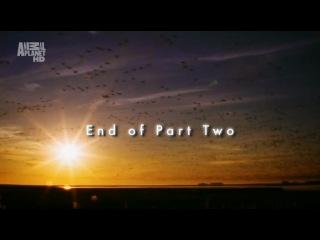 Animal Planet: Wildest Arctic - Tundra (Суровая Арктика - Тундра, 2012, серия 2).