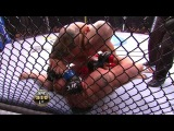 Brock Lesnar vs Shane Carwin (HD 720)