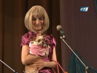 Мисс и мистер СТИ 2013, репортаж СТВ