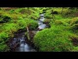 Норвежский фотохудожник Терье Соргьерд - Вода