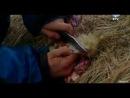 Žmogus prieš gamtą 1.11 [FILMAS.US]