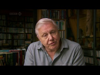 Чарльз Дарвин и Древо жизни / Charles Darwin and the Tree of Life 2009 BBC