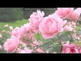 «Всегда в памяте» под музыку Ильдар Ахметов - Син елама жаным. Picrolla