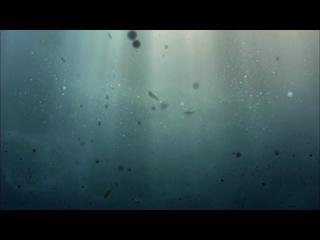 Во вселенную со Стивеном Хокингом: Рассказ обо всем (Часть 1)
