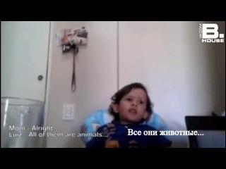 Маленький мальчик объясняет маме почему не нужно есть животных