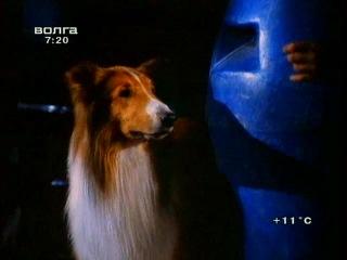 Новые приключения Лесси / The New Lassie 2 серия