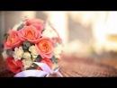 Свадебный клип. Юля и Максим 06.10.2012 год.