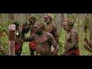 Гуляй-город в Новой Гвинее