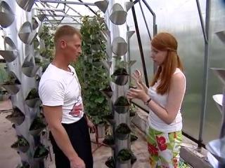 Трукары для удобного выращивания клубники - уДачные советы