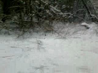Зимние горки и падения на лыжах)) часть 2