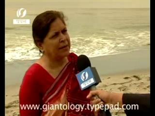 Останки огромного животного выбросило на берег в Индии