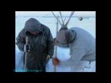 BBC «Искусство выживания Рэя Мирса - Тундра» (Документальный, 1998)