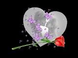 Красивые_клипы_о_Любви_самые_лучшие_песни_2013_года_про_Любовь__Я_тебя_Люблю_medium