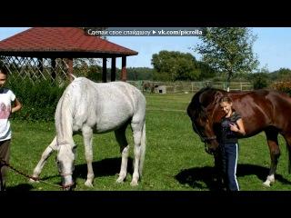 «С моей стены» под музыку Любе - Выду в  поле ночью с конём. Picrolla