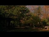 Вдали от рая (2002) / Far from Heaven