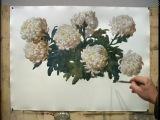 С.Н.Андрияка - Мастер-класс по акварельной живописи -