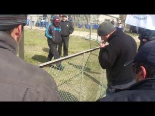 Собачьи бои Умарр(победа)-Даур 3-й раунд