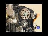 Замена ГРМ VW 1.9 TDI