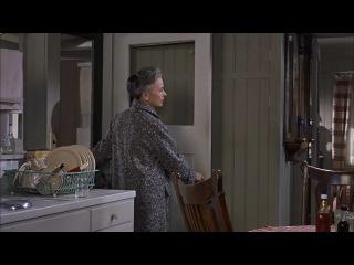 Птицы  (1963) HD лучшие фильмы ужасы, триллер Альфред Хичкок