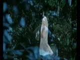 Griefrain - In her wonderland kingdom