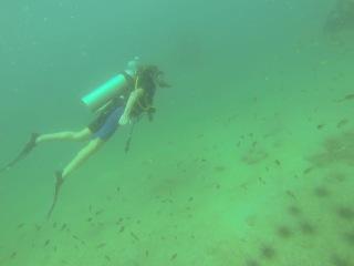 Мой первый опыт погружения с аквалангом