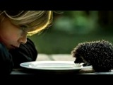 дети и животные под музыку Stefan Nikolai - I will always love you. Picrolla