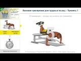Passion4Profession Базовая тренировка для грудных мышц - Уровень 1