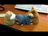 Говорящие хомяки (игрушки) в размножении (ржака полная, смешное видео))