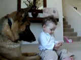 Ava steals Branos Treat (See Brano in Book too).