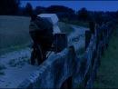 Маленький вампир.Новые приключения.Германия,1993г.11 серия