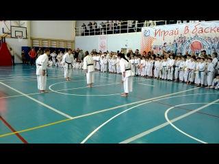 показательные выступления на Открытом первенстве города Соликамска по каратэ 2014г.