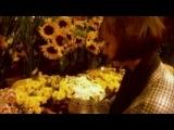 DJ BoBo -  Love Is All Around  94