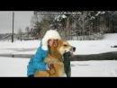 «Со стены друга» под музыку Виктория Дайнеко - Дыши(новинка 2012). Picrolla