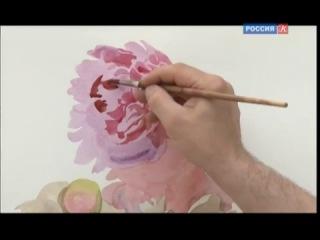 Андрияка С.Н. Урок рисования. Пионы (акварель)