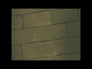 Hanaukyo Maid Team: La Verite   Горничные Ханаукё: Истина 7 серия