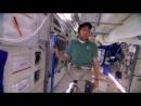 Теория большого взрыва 7 сезон Трейлер все серии на Nenudi с 26 сентября смотри онлайн серия 1,2,3,4,5,6,7,8,9,10,11,12,13,14,15,16,17,18,19,20