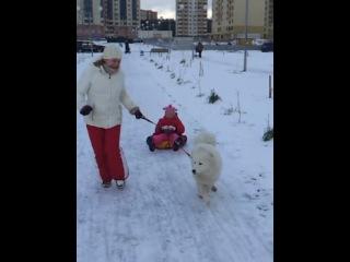 зима пришла!!! дети и собаки счастливы