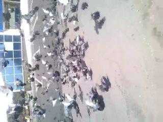 ми в Донецьку,годуєм голуби)))