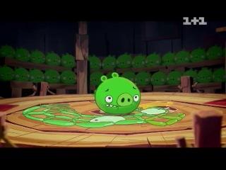 Злые птички / Angry Birds - 6 серия HD (Pig talent - Таланты свиней)