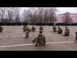 Показуха ко дню морской пехоты ДШБ(HQ)