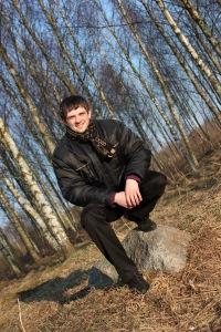 Дмитрий Фисько, Берёза