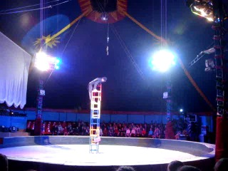 В цирке шапито Алле-Москва. Новый год 2014 г.
