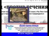 ЧасПик. Итоги Среда, 4 декабря 2013 г. № 48 (521)