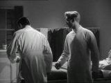 EL EXPERIMENTO DEL DR.QUATERMASS (1955)