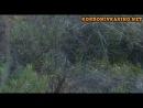 Операция: Тропическая Буря/Operation: Tropical Stormy(2009) 2 сд