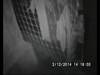 Драконы Всадники Олуха сезон 12345 2013 смотреть