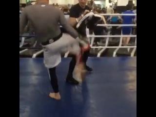 Гасан Умалатов подготовка к второму поединку UFC в спортивном клубе Боец